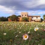 Entouré d'oliviers, le Mas Coquells occupe une maison de campagne paisible, datant du XIIe siècle et comprenant un joli jardin ainsi que 3 terrasses. Il offre une vue magnifique sur la Costa Brava.