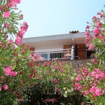 Cau del Llop is a 100m2 holiday home located 350m from the sea. It is suitable for up to 8 people and offers sea views.