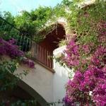 Occupant une charmante maison de campagne dans le centre de Castelló D'empúries, la résidence Apartaments Can Gibert vous accueille dans des appartements dotés d'une terrasse et d'une connexion Wi-Fi gratuite. Entourée d'agréables jardins, elle se trouve à 4 km de la plage d'Empuriabrava.