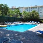 Entouré par des jardins, une piscine extérieure et un barbecue, ce complexe d'appartements est idéal pour profiter de la chaleur des rayons du soleil et du fantastique littoral de la Costa Brava. Les appartements Les Palmeres se trouvent dans le centre de Platja d'Aro, près de la marina et à seulement 200 mètres de marche de la belle plage de la station balnéaire.
