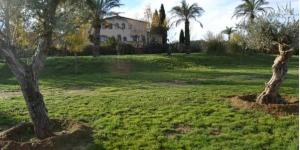 Le Granja Ecuestre Can Sort est situé sur une colline, à 25 km de Gérone. Ce complexe rustique dispose d'une piscine extérieure ouverte en saison, d'une connexion Wi-Fi gratuite et d'un centre équestre avec des poneys pour les enfants.