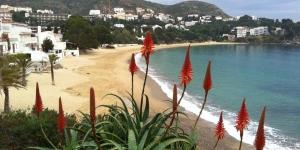 Le Santa Llucia Apartaments propose des appartements dans 2 emplacements de la baie de Roses et à 5 minutes à pied de la plage la plus proche. Ces appartements bien équipés présentent une décoration moderne.