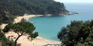 Doté d'une piscine extérieure commune, d'une aire de jeux pour enfants et d'un barbecue, le Camping Canyelles est situé à 3minutes à pied de la plage de Cala Canyelles. Il propose des mobile homes et des studios avec un balcon ou une terrasse.