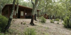Situé au milieu des jolies montagnes des Pyrénées catalanes, ce camping vous accueille à 3 km de Maçanet de Cabrenys. Il dispose d'un grand terrain avec une piscine extérieure et de bungalows en bois équipés d'une télévision.